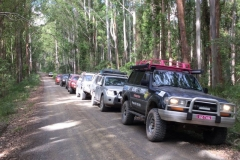Barrington Tops Tag-Along 4wd Tour
