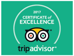 2017 tripadvisor award for excellence